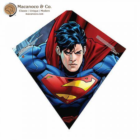 81481 Superman Sky Diamond Kite 1